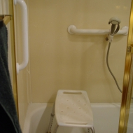 White grab bar with hand held shower head