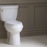 Kohler Cimarron 2 Piece Round Toilet